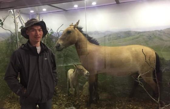 14 настайдаа байгаль хамгаалагч болсон Б.Батлхагва:Амьтад хүнээс илүү бие биедээ тусалдаг