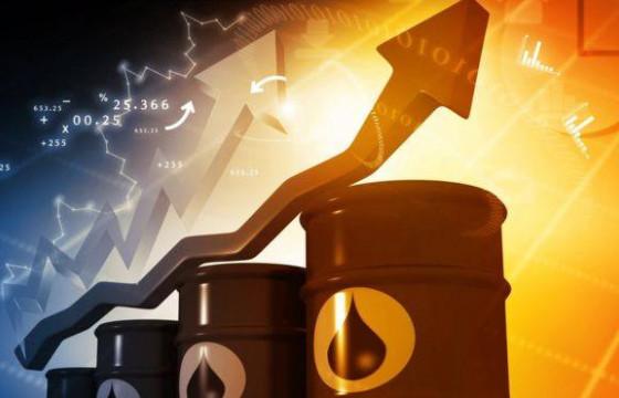 АНУ-ын шинэ Ерөнхийлөгчийн тангараг газрын тосны зах зээлд өсөлт дуудлаа