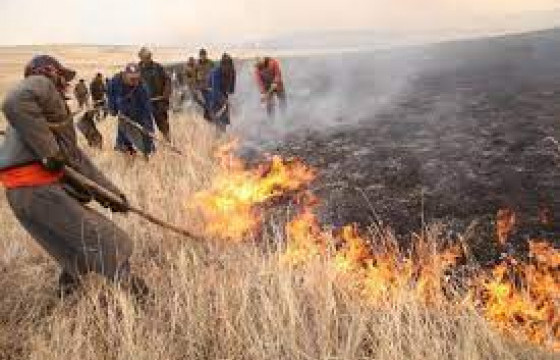 Сүхбаатар аймагт гарсан хээрийн түймрийг бүрэн унтраажээ