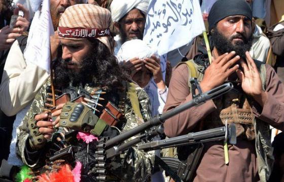 Афганистаны Засгийн газар, Талибан бүлэглэл найрамдлын хэлэлцээ хийнэ